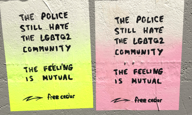 Solidarity Statement with Cedar Hopperton and the Radical Queer Community in Hamilton
