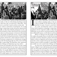 What is a black bloc?