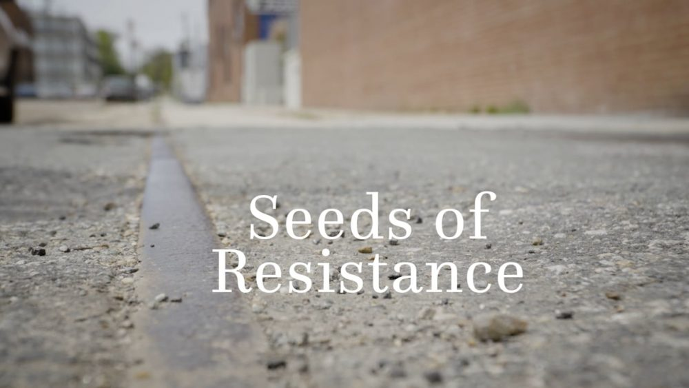 Seeds of Resistance: A New Resource for Land Defense