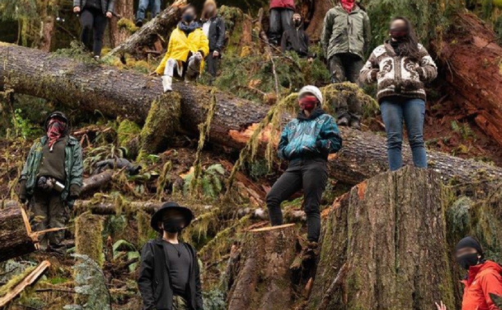 Vancouver Island, BC: Gate Locked as RCMP Ramps up to Attack Growing Logging Blockades